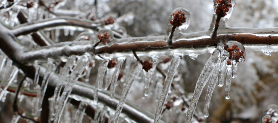 Feb 11: Possible Ice Storm Detected